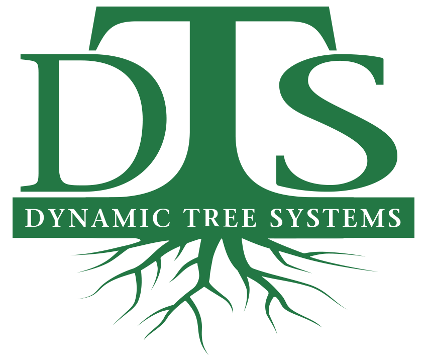 Dynamic Tree Systems