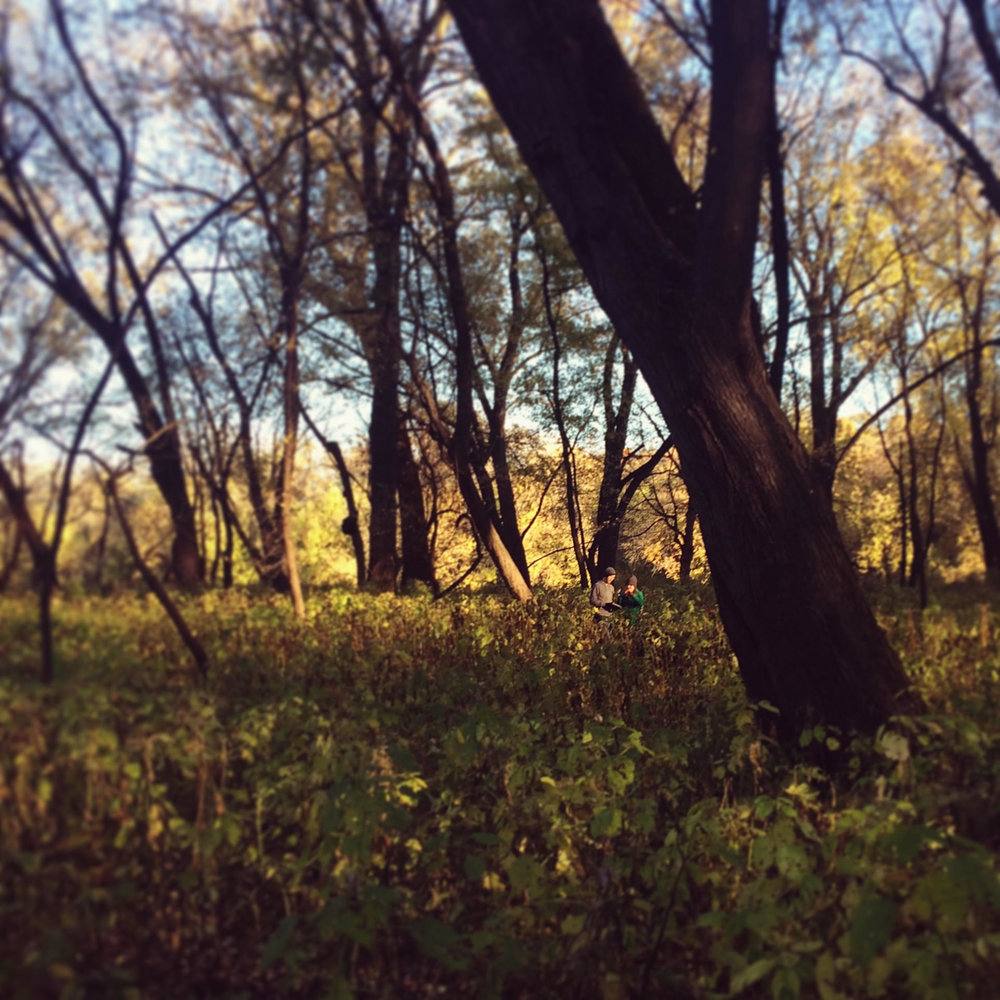 Searching for mushrooms at Fort Snelling State Park.