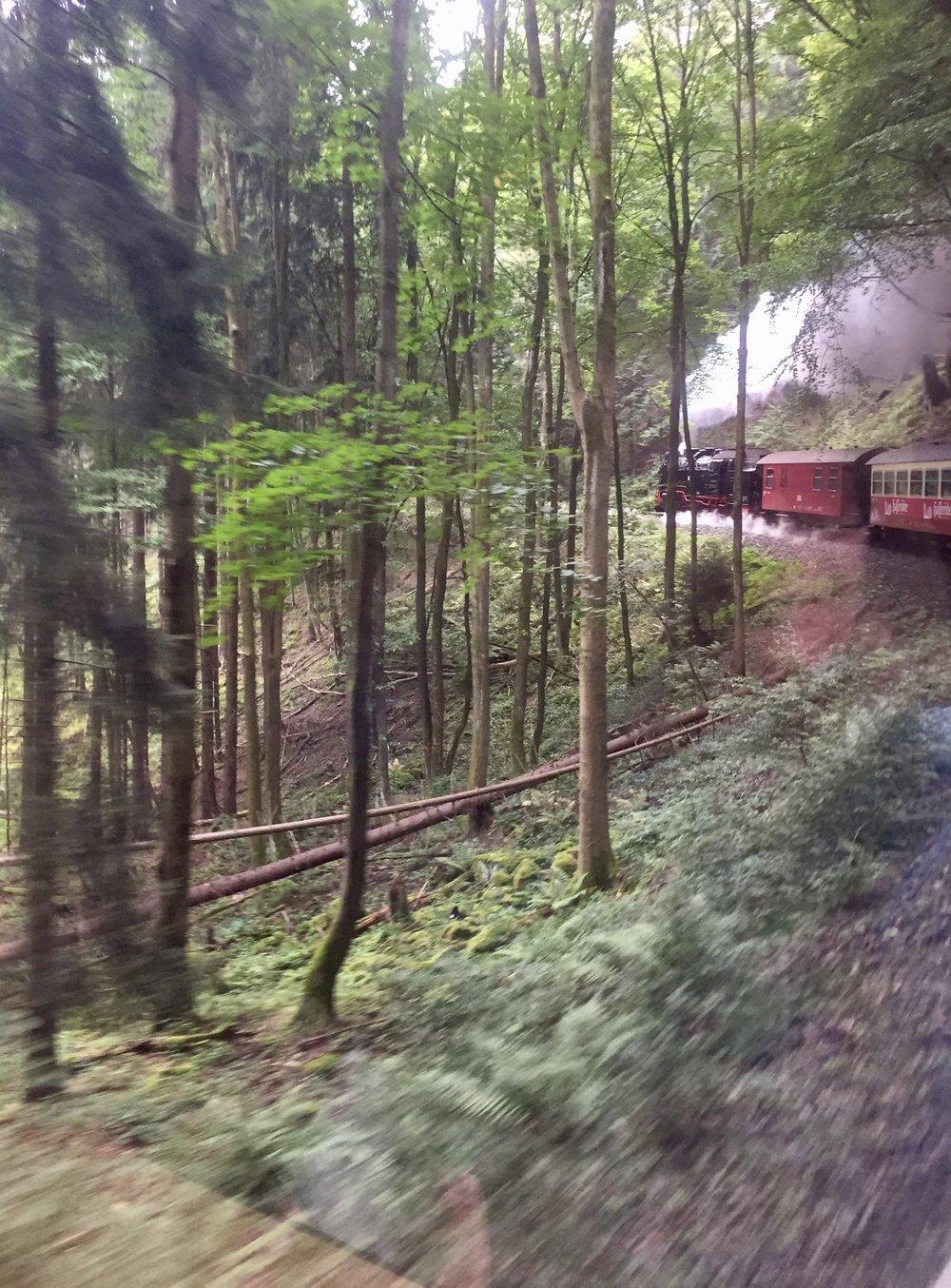 Toget snodde seg oppover hele 230 meter over havet. Her er et bilde tatt fra den vognen vi satt i.