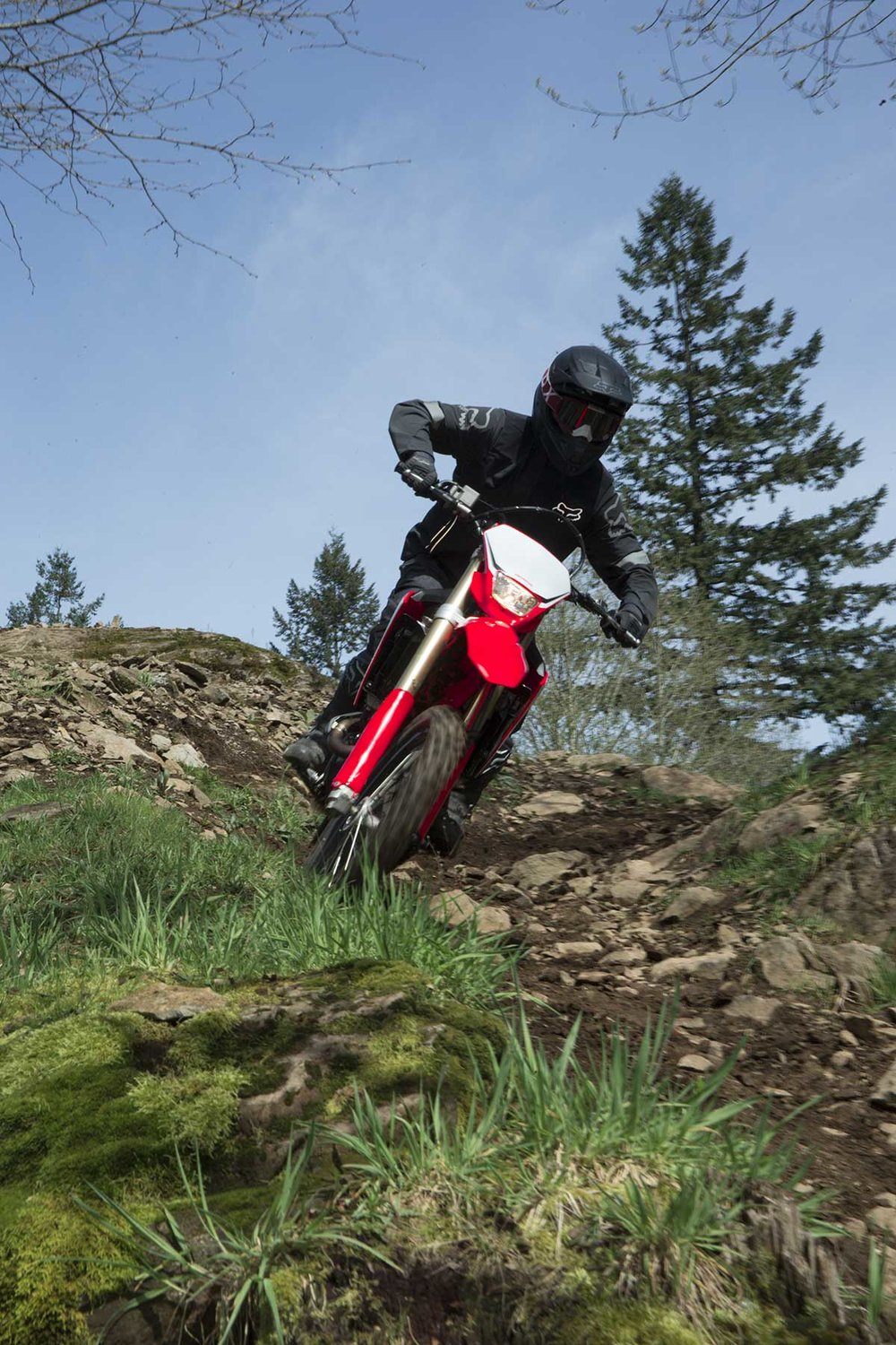 19-Honda-CRF450X_Action_4.jpg