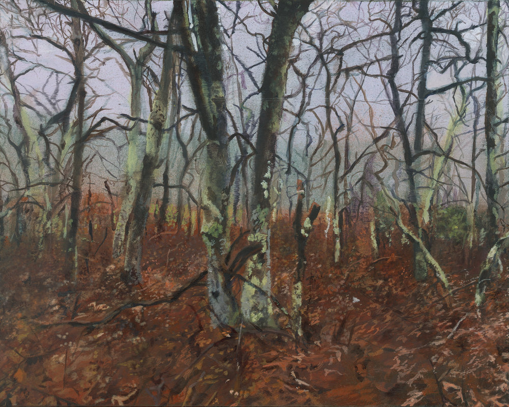 Emma Tapley: Forest, Sag Harbor