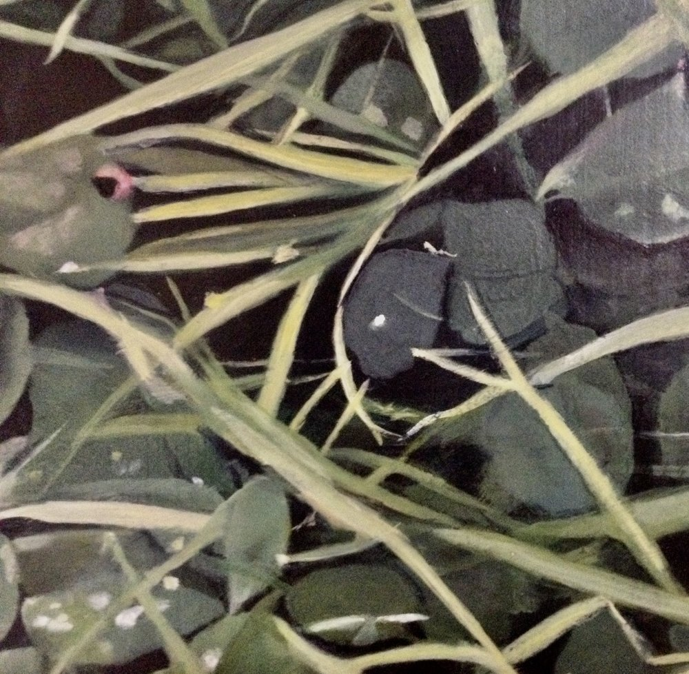 Emma Tapley: Cultivating the Empty Field (detail)