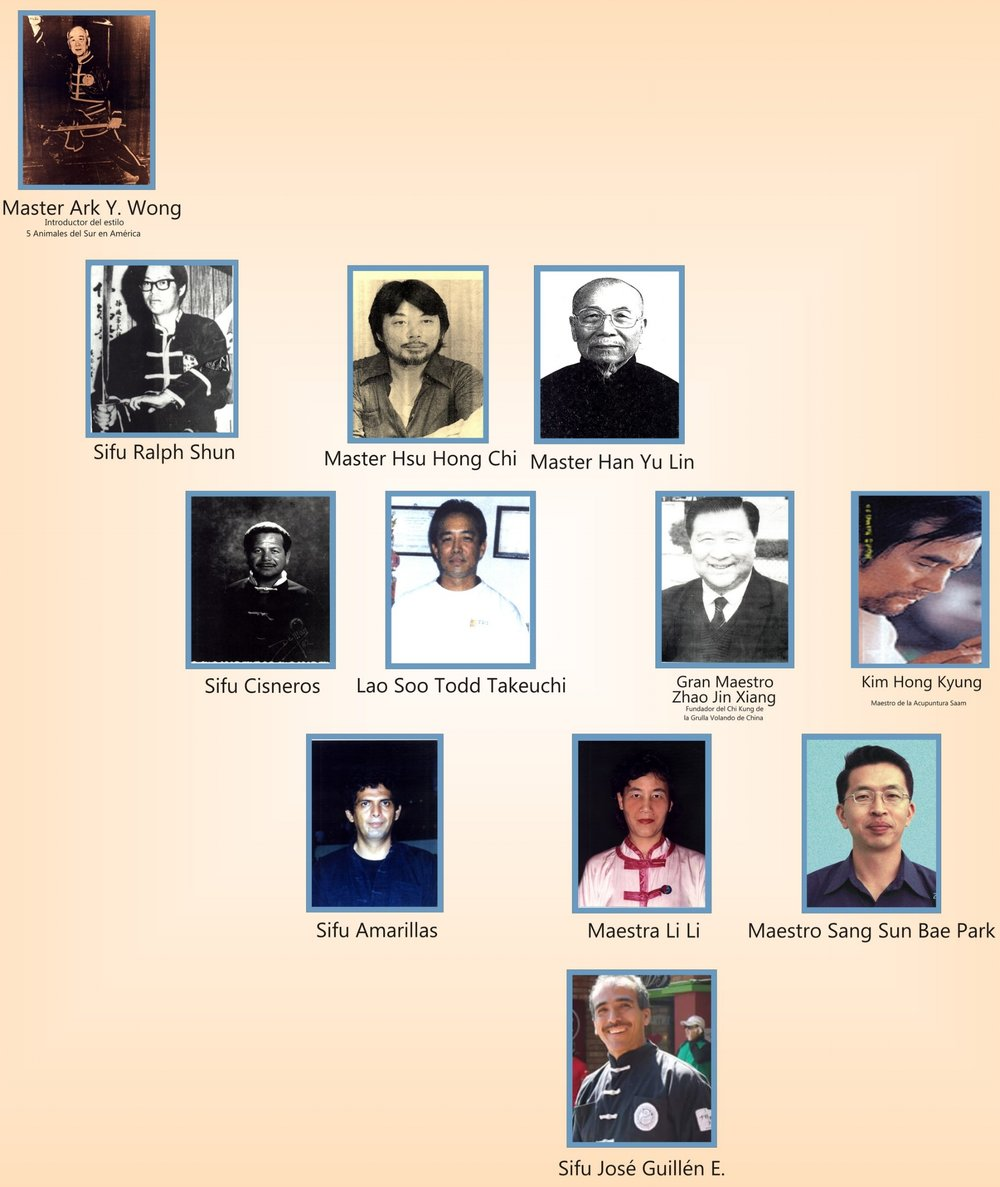 The chart of our lineage. Check it out!