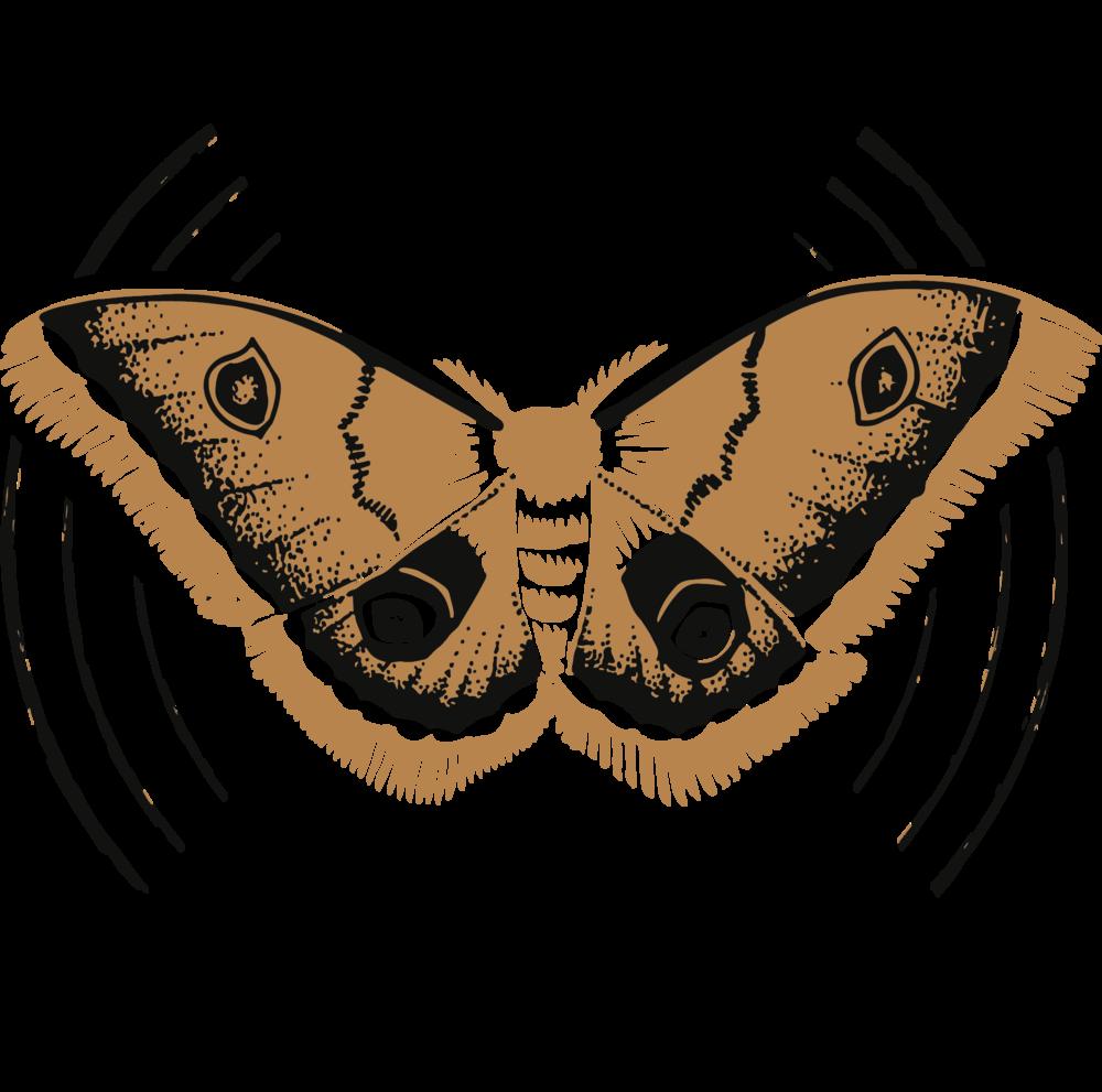 mothcloth-final.png