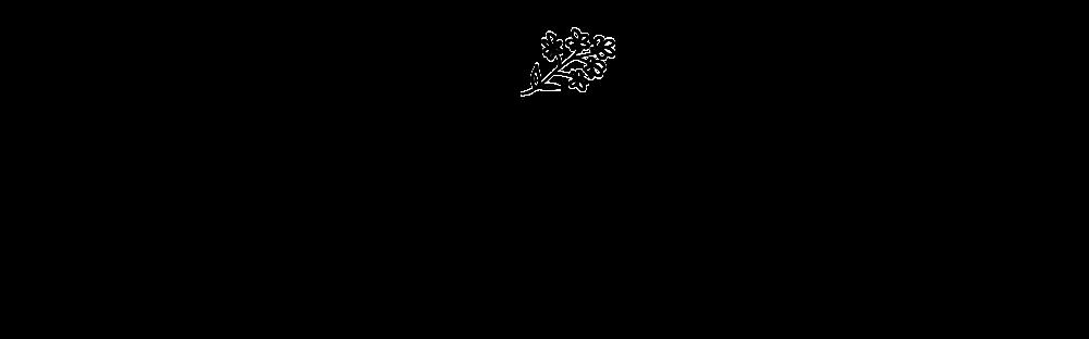 Kentucky Songbird - Logo Concepts - Botanical-07.png