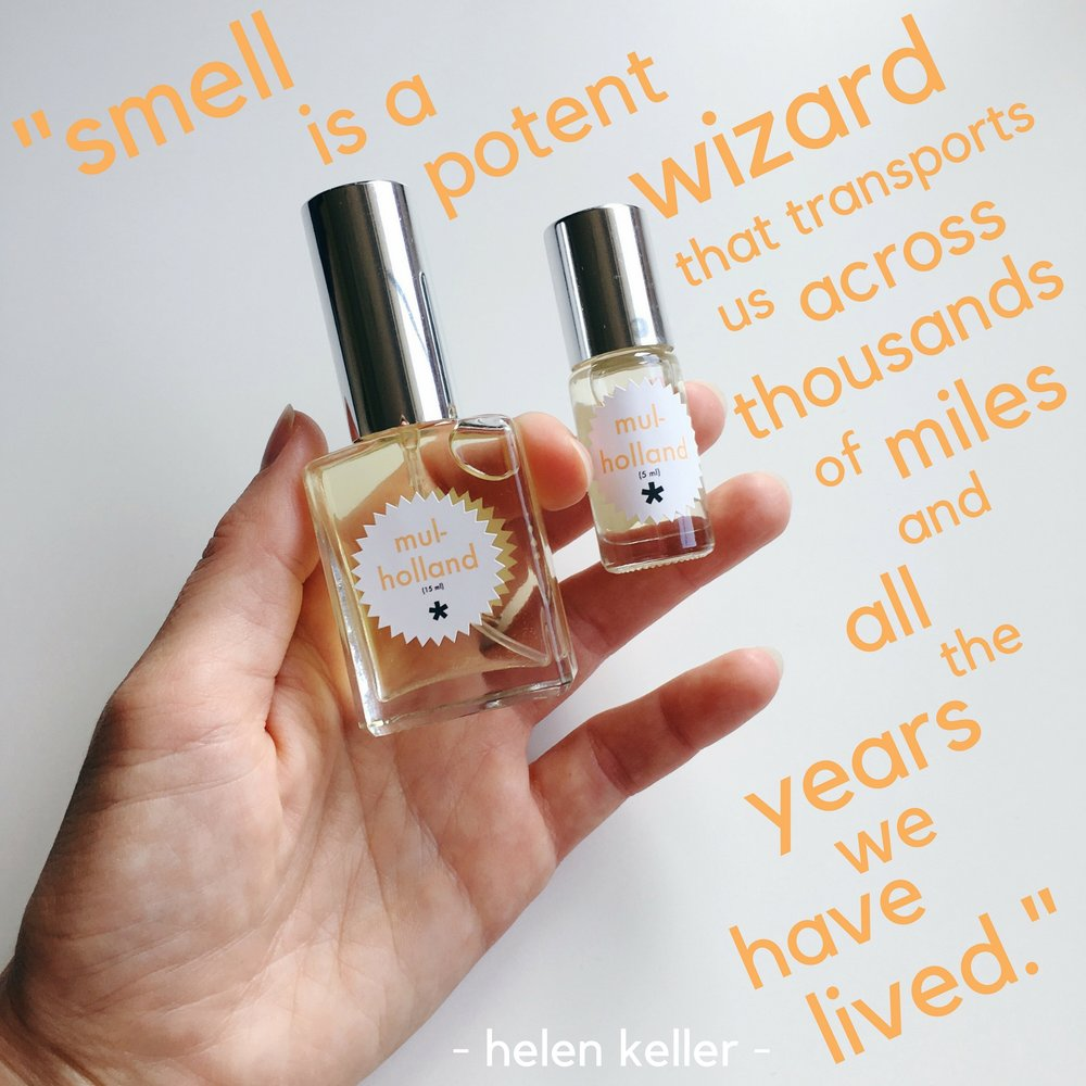 smell is a potent wizard.jpg