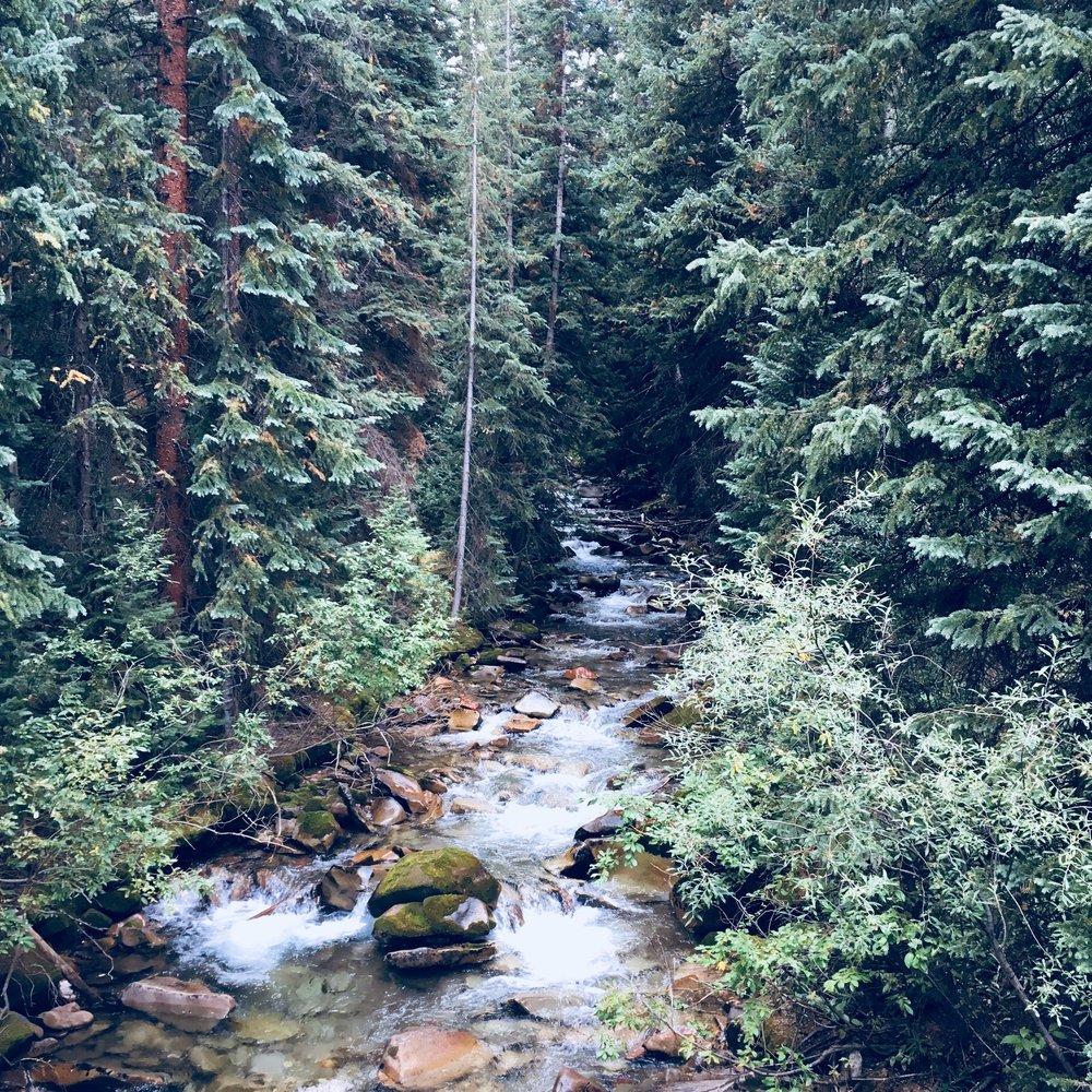 Mountainside creek, Colorado