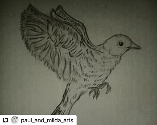 #Repost @paul_and_milda_arts with @make_repost ・・・ 🐦.. @klein_milanek69 @pablogabco .. . #art #artist #drawing #draw #pencildrawing #bird #likeforlikes #likeforfollow #czechart #czechartist  #instaczech