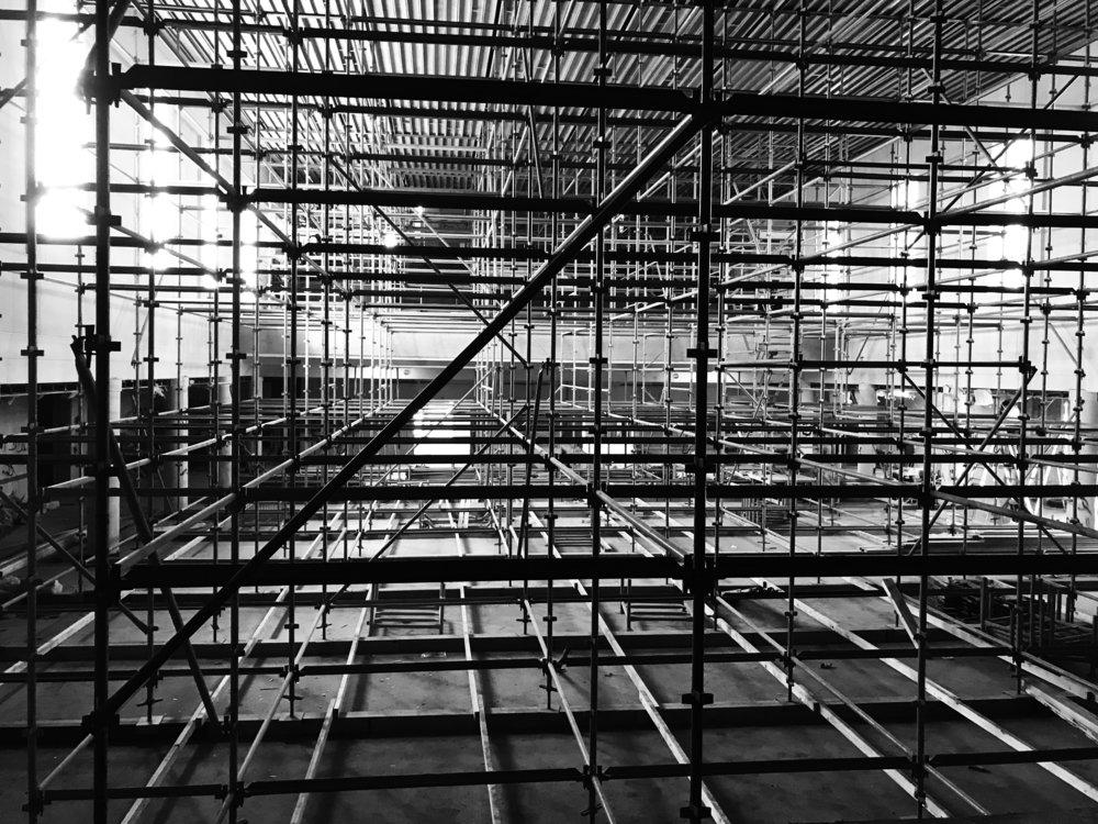 bird cage scaffold.jpg