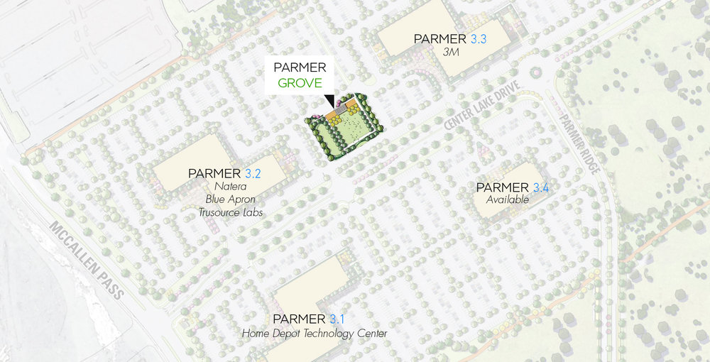 Parmer Grove.jpg