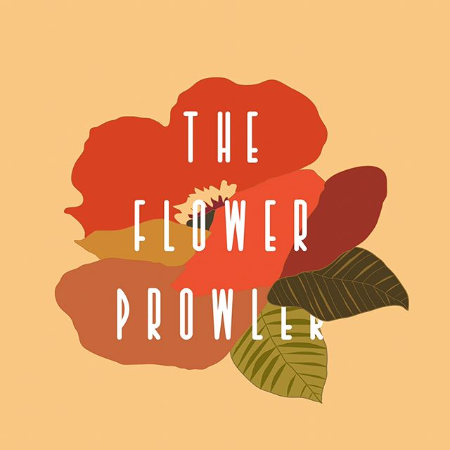 I've never tried making a logo or anything before but I gave it a go today and I really like the results! I might laugh at this once I actually start taking design classes but whatevuh!! Here she is! The Flower Prowler's Logo!! 🌺 I used the fabric that's going inside for the inspo!