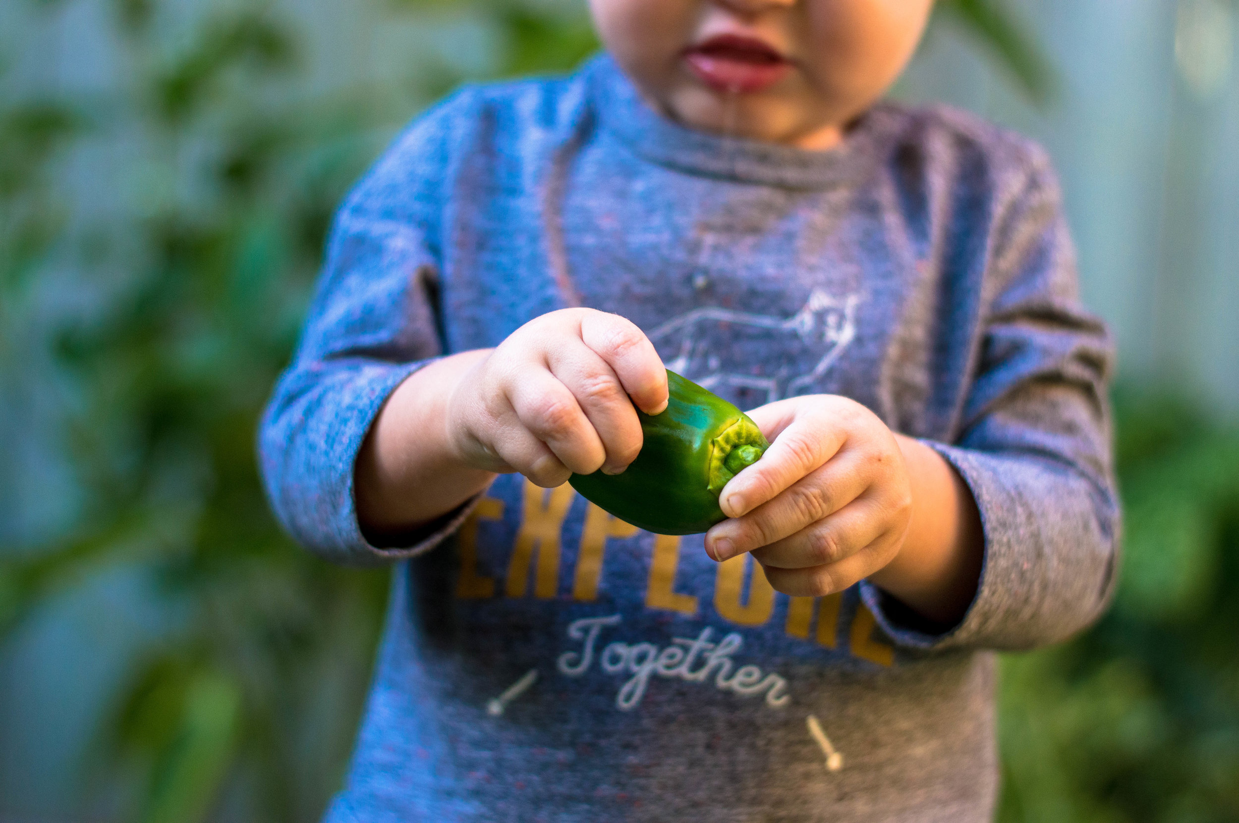 Little green lives - 5 reasons why digging a vegetable garden can make you feel like a rockstar Mummy/Human.