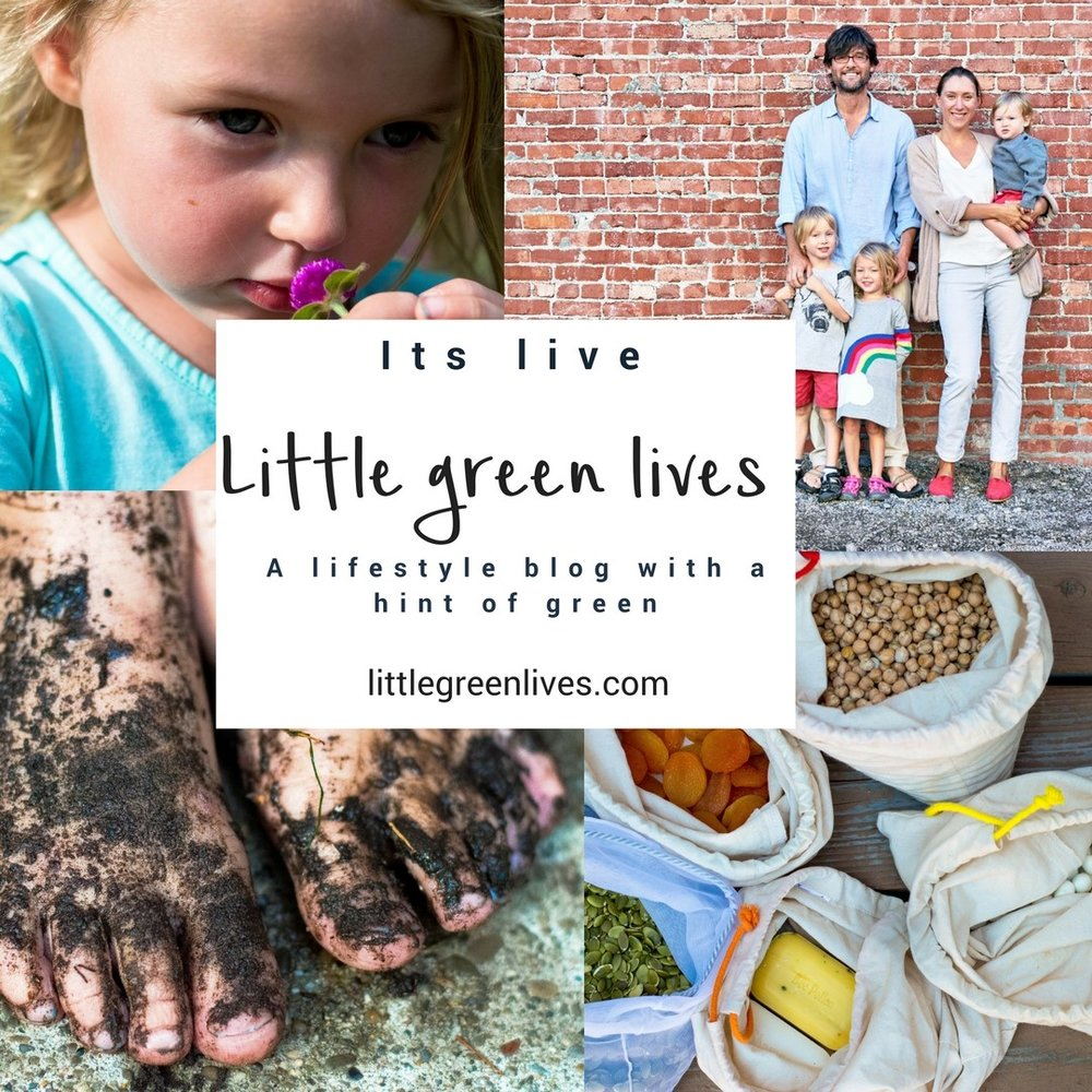 Little Green Lives Self-Doubt