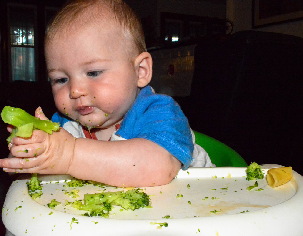 Little Green Lives -Baby-led weaning