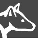 5.3km - Dingo Dash