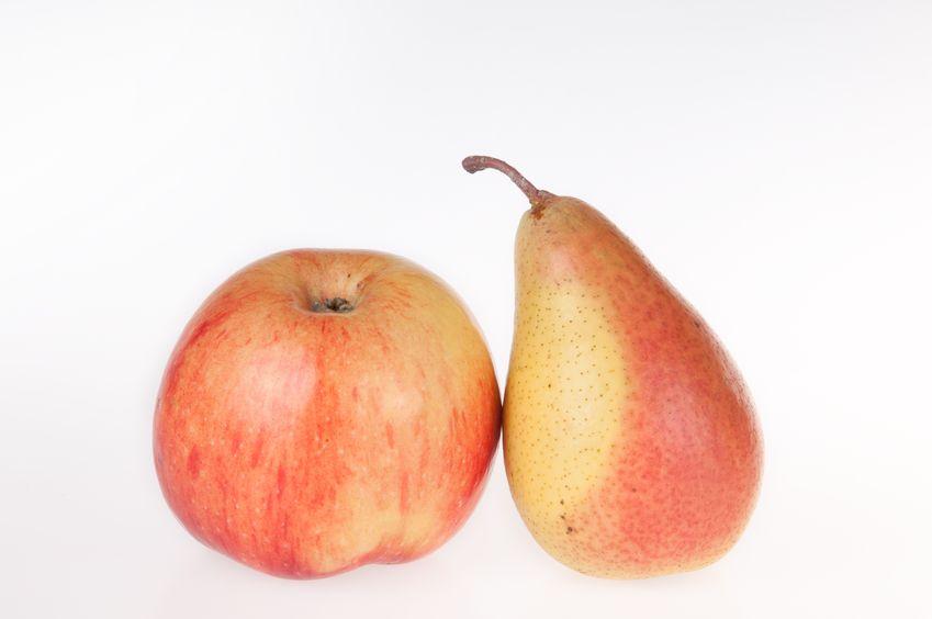 iSupport-Apple-Image.jpg