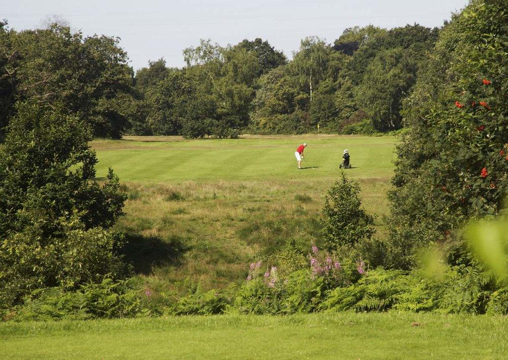 LSGC+-+Wimbledon+Common+Golf+-+2nd+Hole.jpg