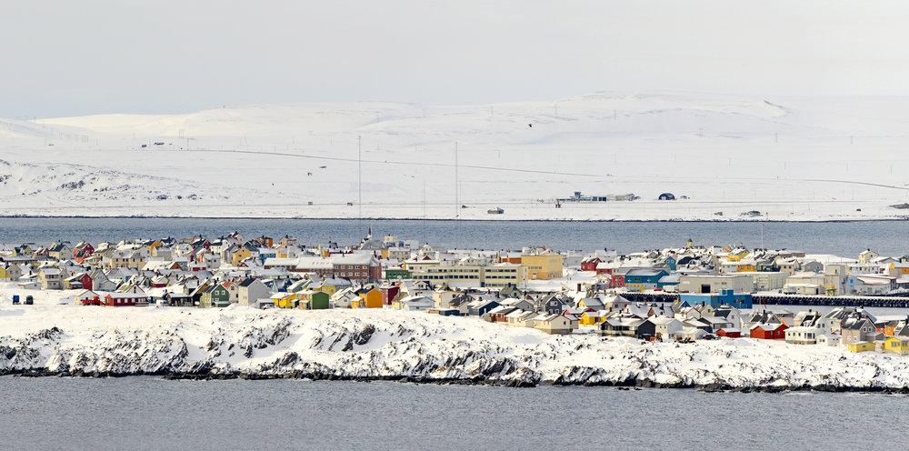 Vardø by sett fra Hornøya fuglefjell. Vardø i mars:Fuglefjellet yrer av liv, og den fargerike byen i det snøhvite arktiske landskapet må oppleves.