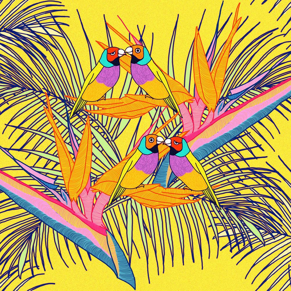 yellow-birdsofpara.jpg