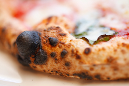 Margherita Crust.jpg