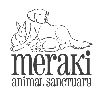 Meraki Animal Sanctuary