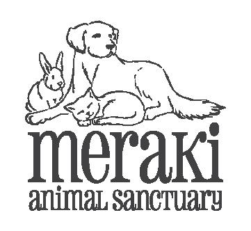 Meraki Logo 9.27.17-01.png
