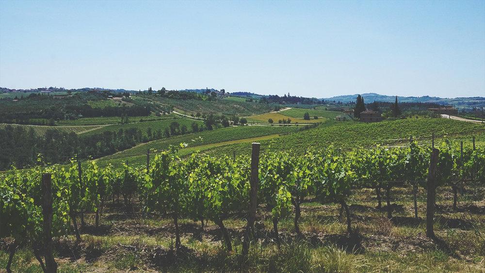 Una veduta della via di Castiglioni, che percorre un crinale tra la Villa di Castiglioni e Montefugoni.