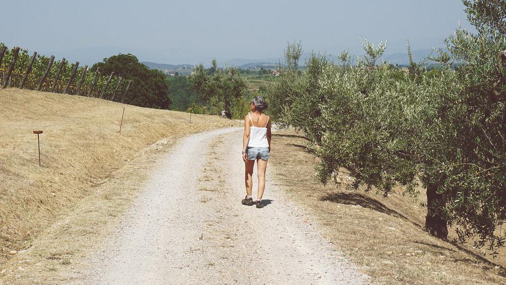 Silvia Nesi, cammina tra gli ulivi e la vigna.