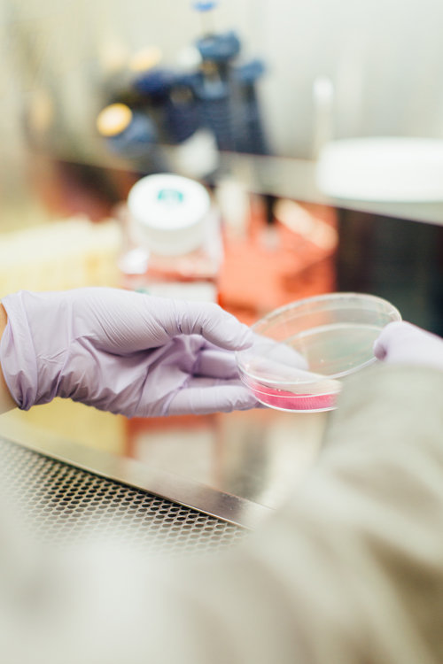 finding better medicines why science matters
