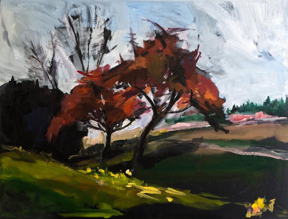 Fin Octobre • Acrylique sur toile • 81 x 61