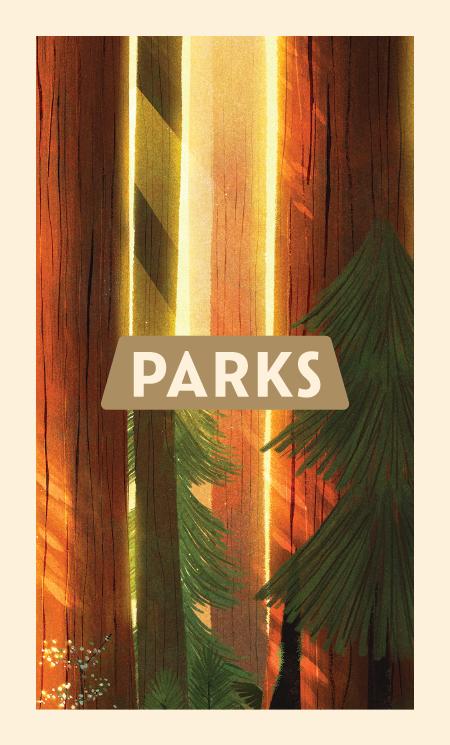 Park-Cards-1_Backs.png