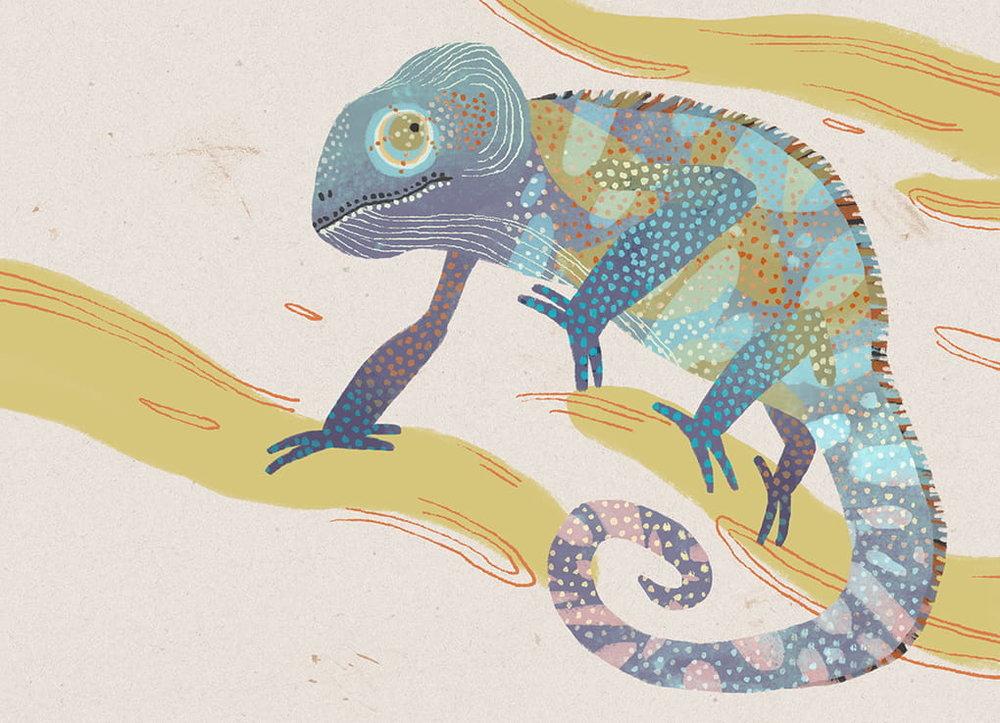 chameleon-min.jpg