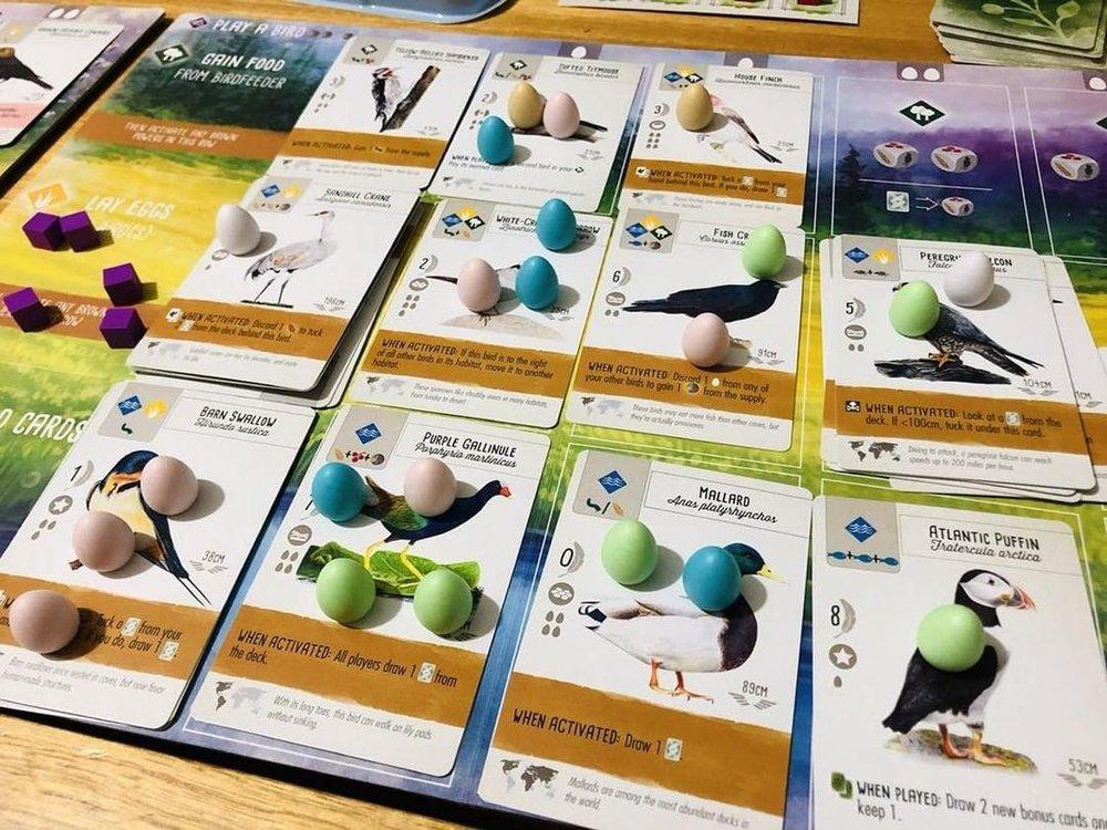 Image of Wingspan board game - courtesy of Instagram @ellalovesboardgames