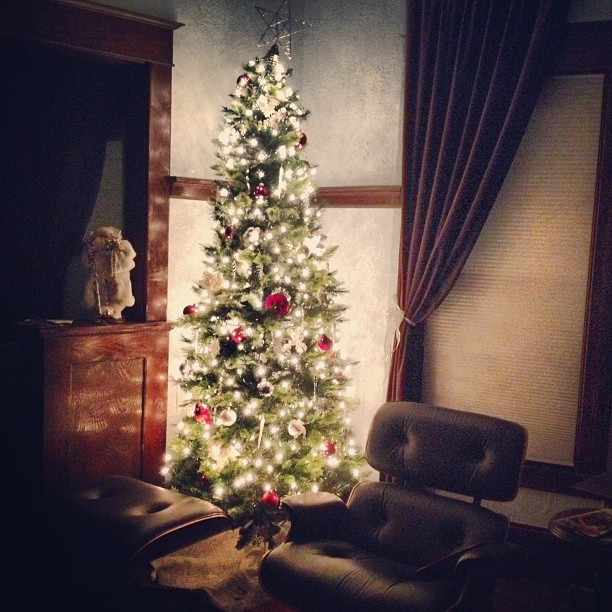 O Christmas tree, O Christmas tree… #merrychristmas #happyholidays