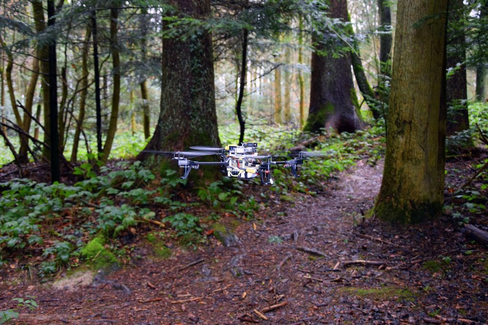 droni foreste controllo salvaguardia ambiente.jpg