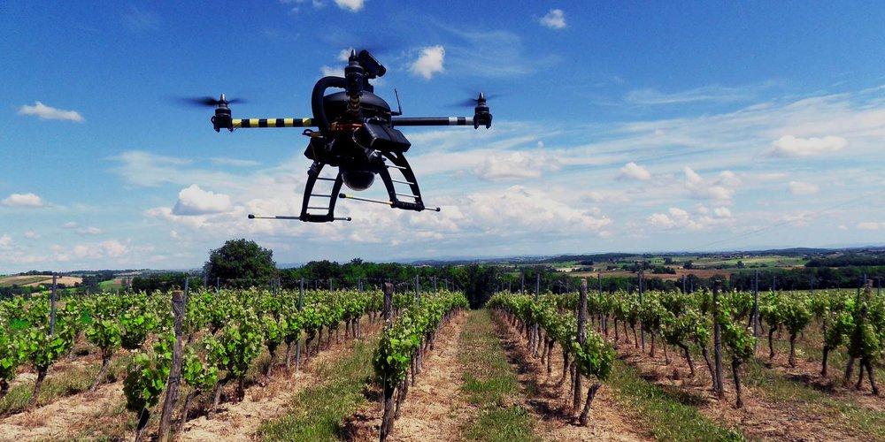 droni nelle vigne tecnologia viticoltura piemonte