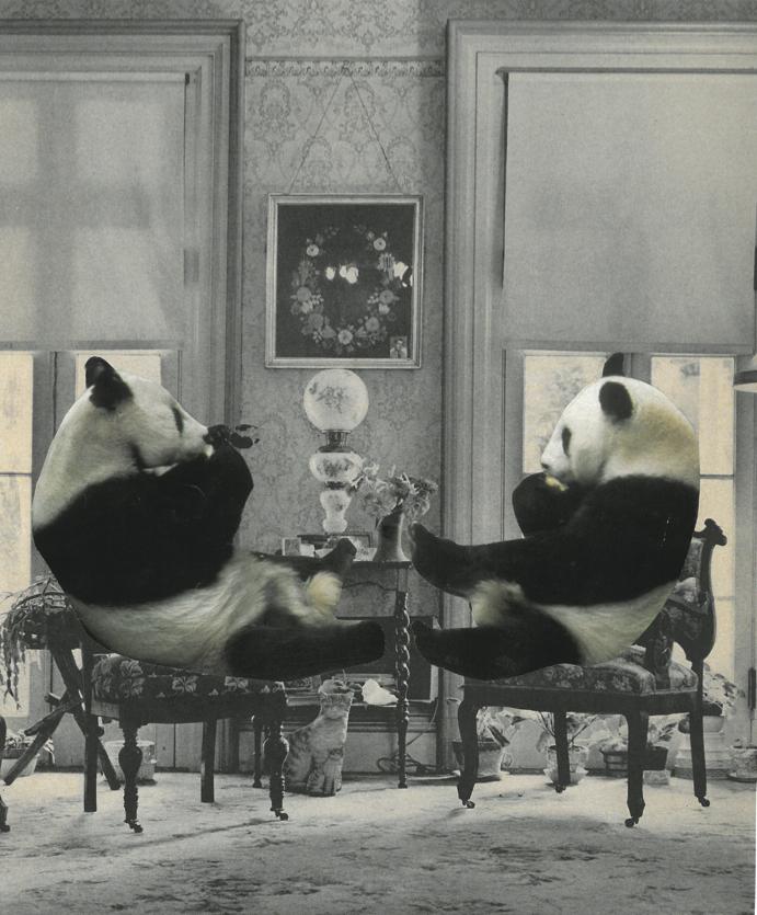 PANDA MANOR