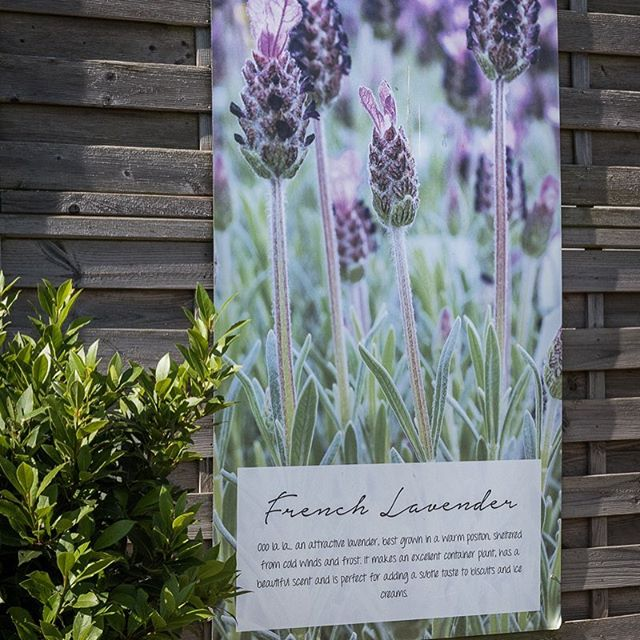 More fab signage for @ottergardencentres