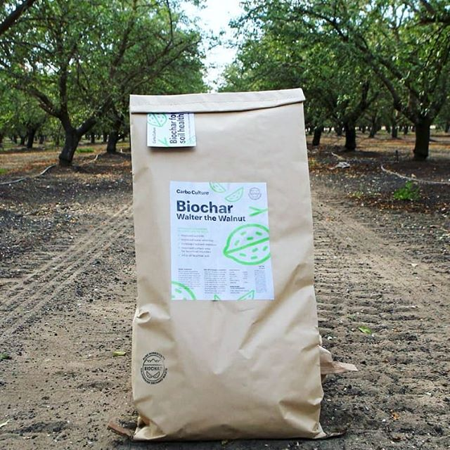 Go vote and then buy biochar! :) 🌱🔎🌾 Mix in into your compost while the compost is going to make it ready sooner, and get the microbes moved into their new home faster! Link in bio!