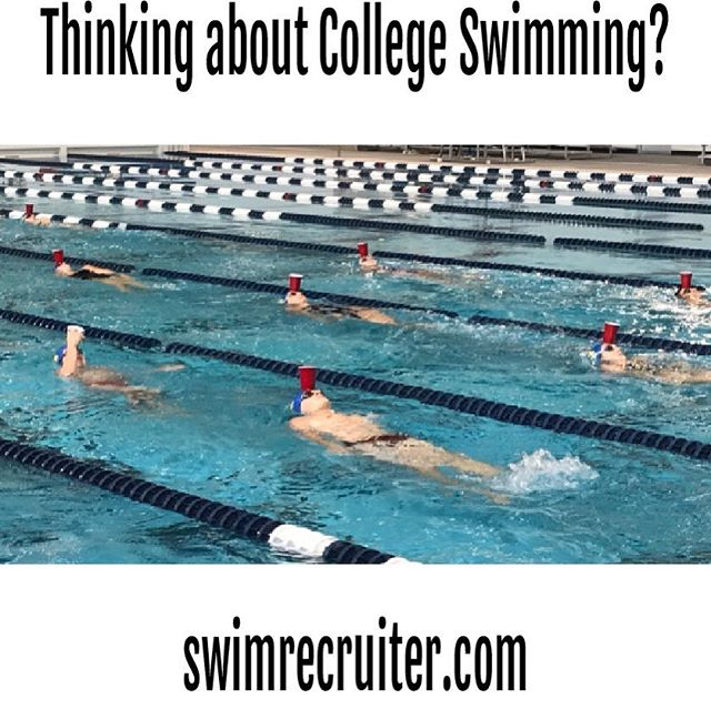 hey swimmer friends! you know where to find us? (check out link in bio) 🏊🏊‍♀️🏊🏊‍♀️🏊