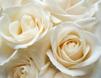flowers wedding.jpg