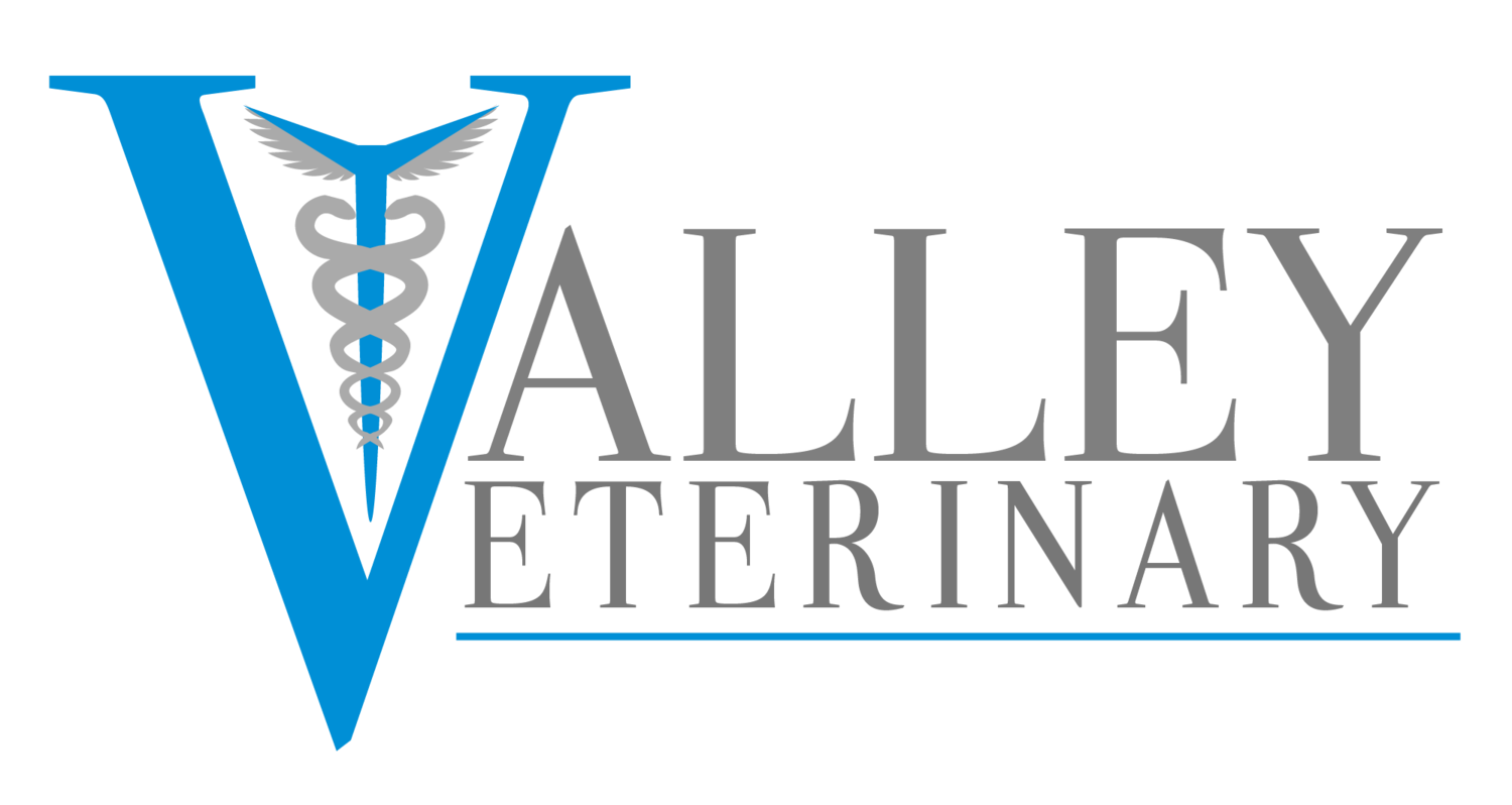 Valley Veterinary Care