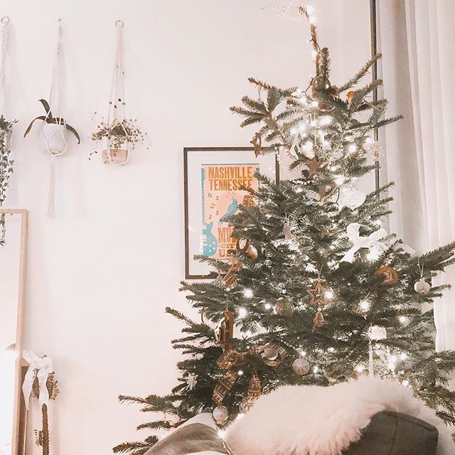 She's here 😍😍 in her 9ft glory 😂 being an adult is fun sometimes when you buy the biggest Christmas tree you can 😂😂 today was stressful but I'm glad she was worth it! Will show some close up deets of the new tree theme when there's actual light 😂🌲🌲 hooray! Its Christmas! 🌲🌲 #myhomevibe #homeinspo #interiorandhome #interiordesign #interiorstyling #interiordecor #homedecor #pocketofmyhome #lovelyinterior #passionforinterior #littlestoriesofmylife #seekthesimplicity #livethelittlethings #feelfreefeed #nothingisordinary #makemoment #thehappynow #myeverydaymagic #seekthepositive #homeinspiration #plantscout #plantlove #indoorjungle #livingwithplants  #houseplantcommunity ##manchesterblogger #christmas #christmastree #alpine #countrychristmas