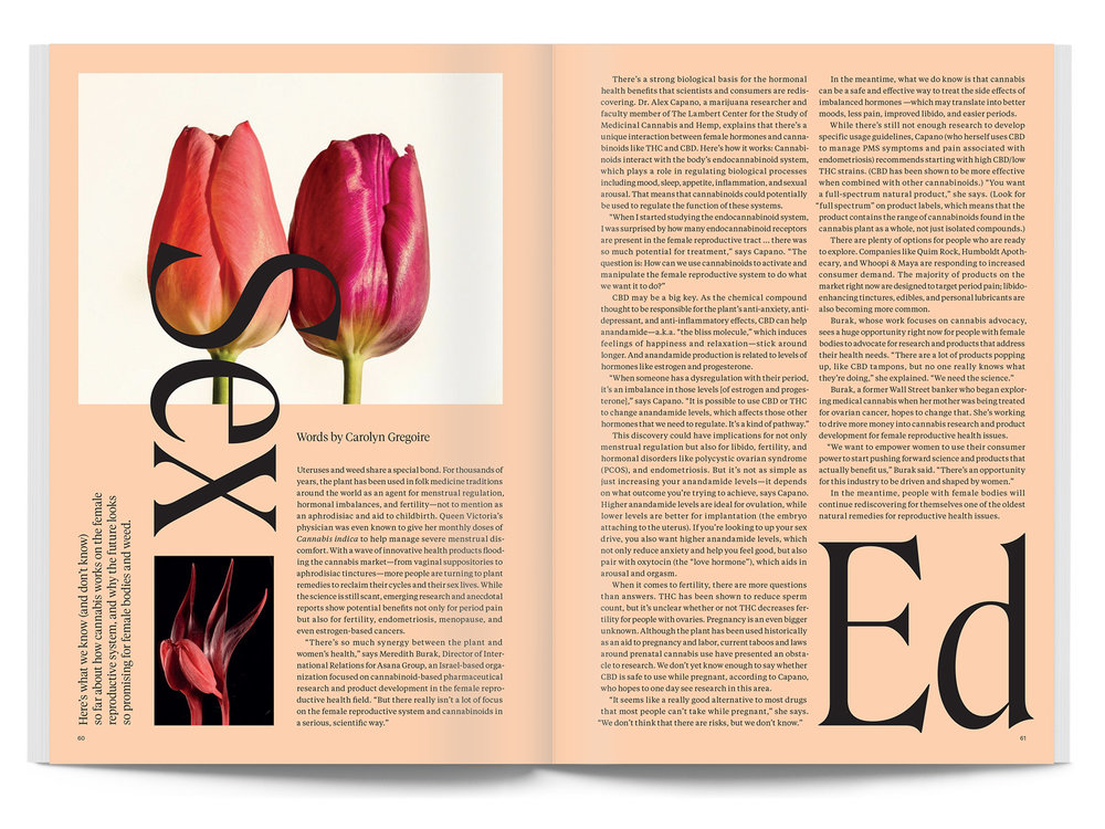 issue04-spread07.jpg