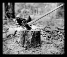 axe_stump.jpg