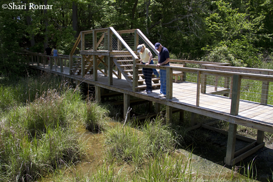 Smithsonian Education and Research Center trails
