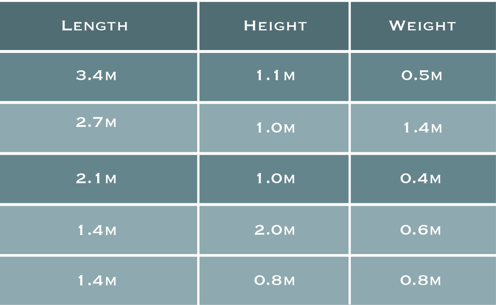 This table shows the sizes of large A. vastus found in Senanus Reef. Sponges 25 times larger could be significantly older, or, alternatively, the could have grown much faster.