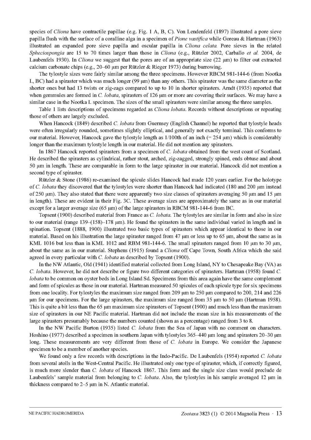 Austin et al 2014 NE Pacific Hadromerids_Page_13.jpg