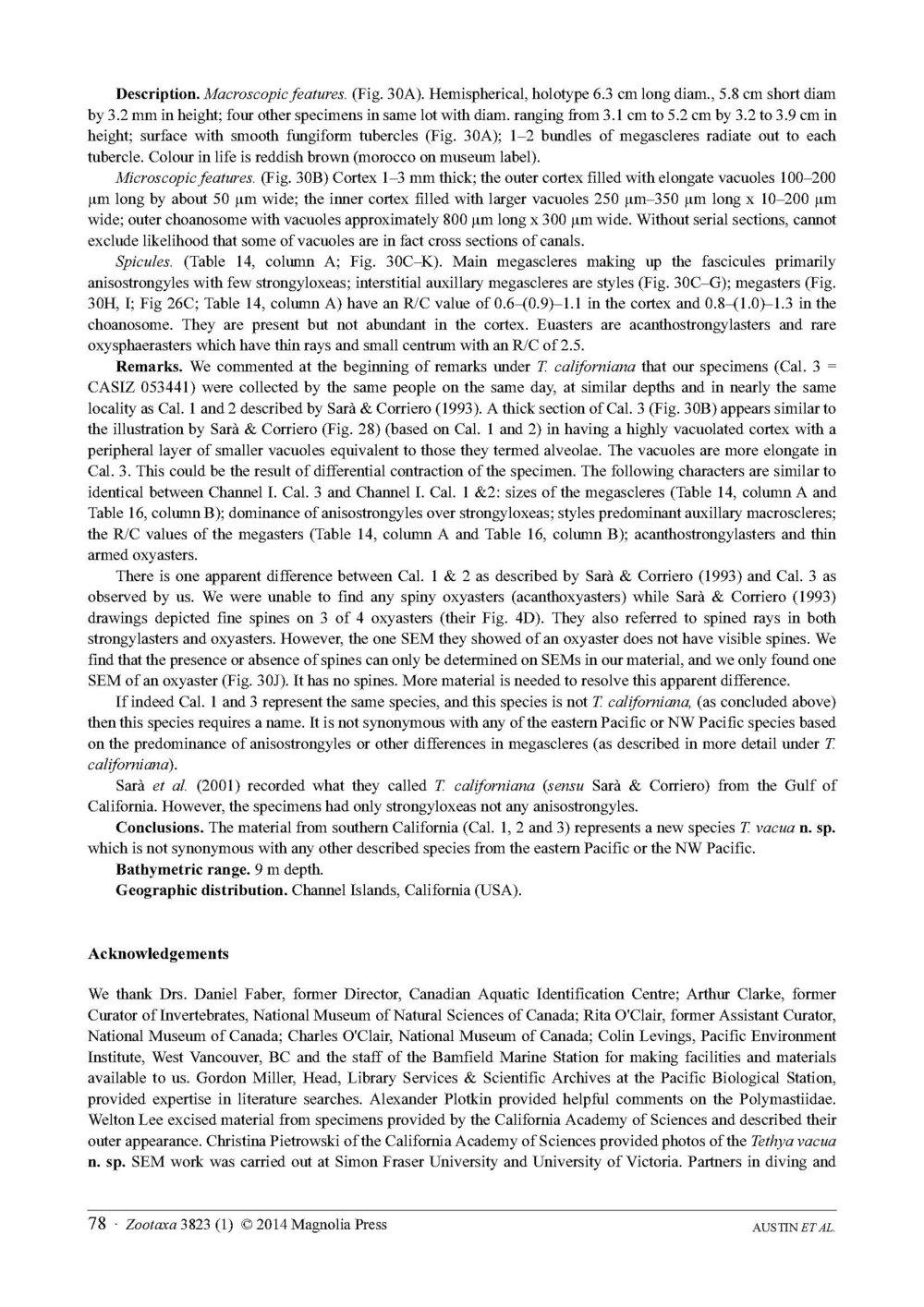 Austin et al 2014 NE Pacific Hadromerids_Page_78.jpg