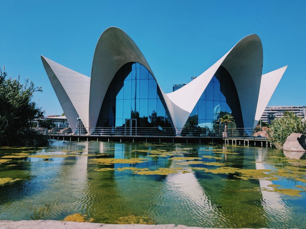 Solo Trip Inspiration: 4 Places to Visit in Valencia